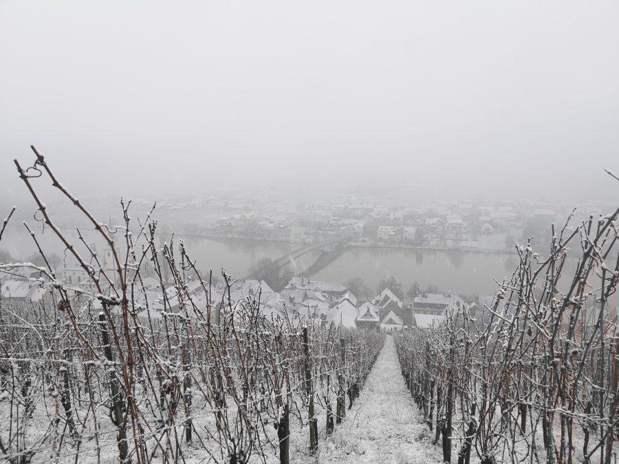 Dolina Mosel - zima