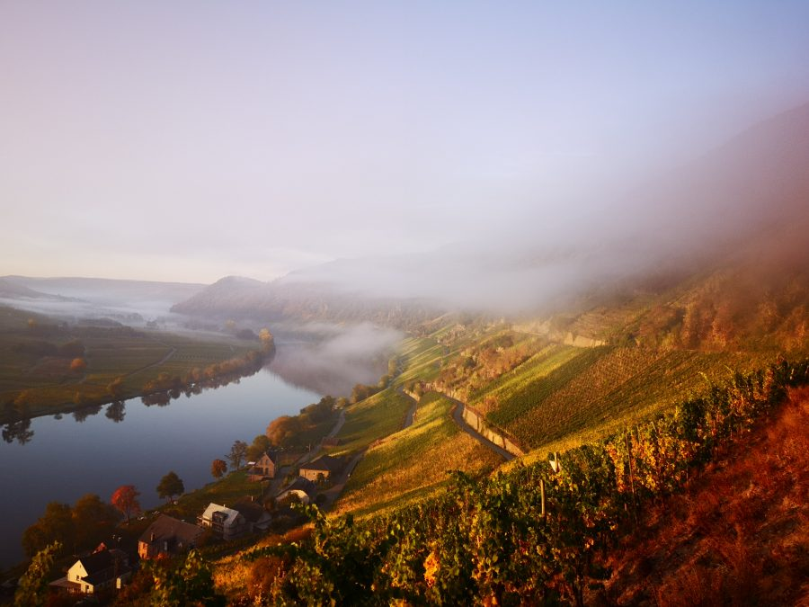 Mgły nad Mozelą