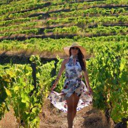 Na winnicy w Douro