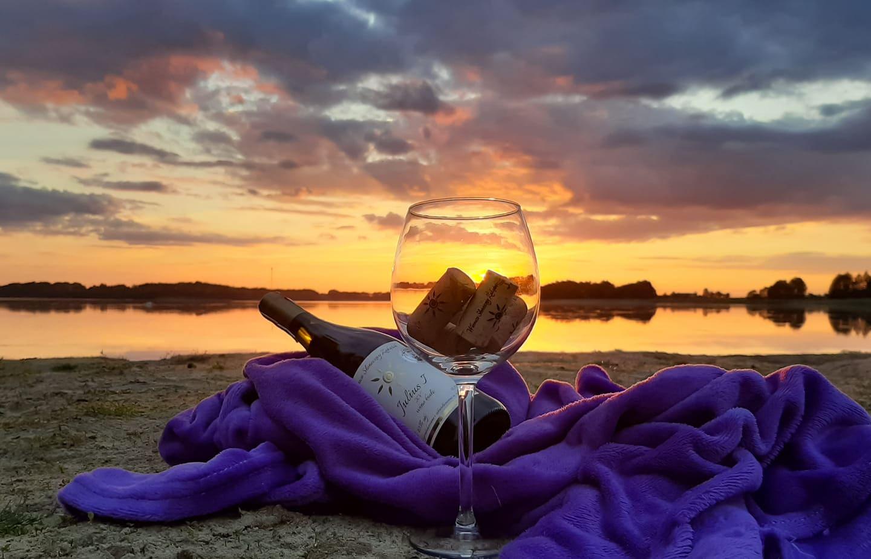 Winnica Słoneczny Zakątek - nostalgicznie