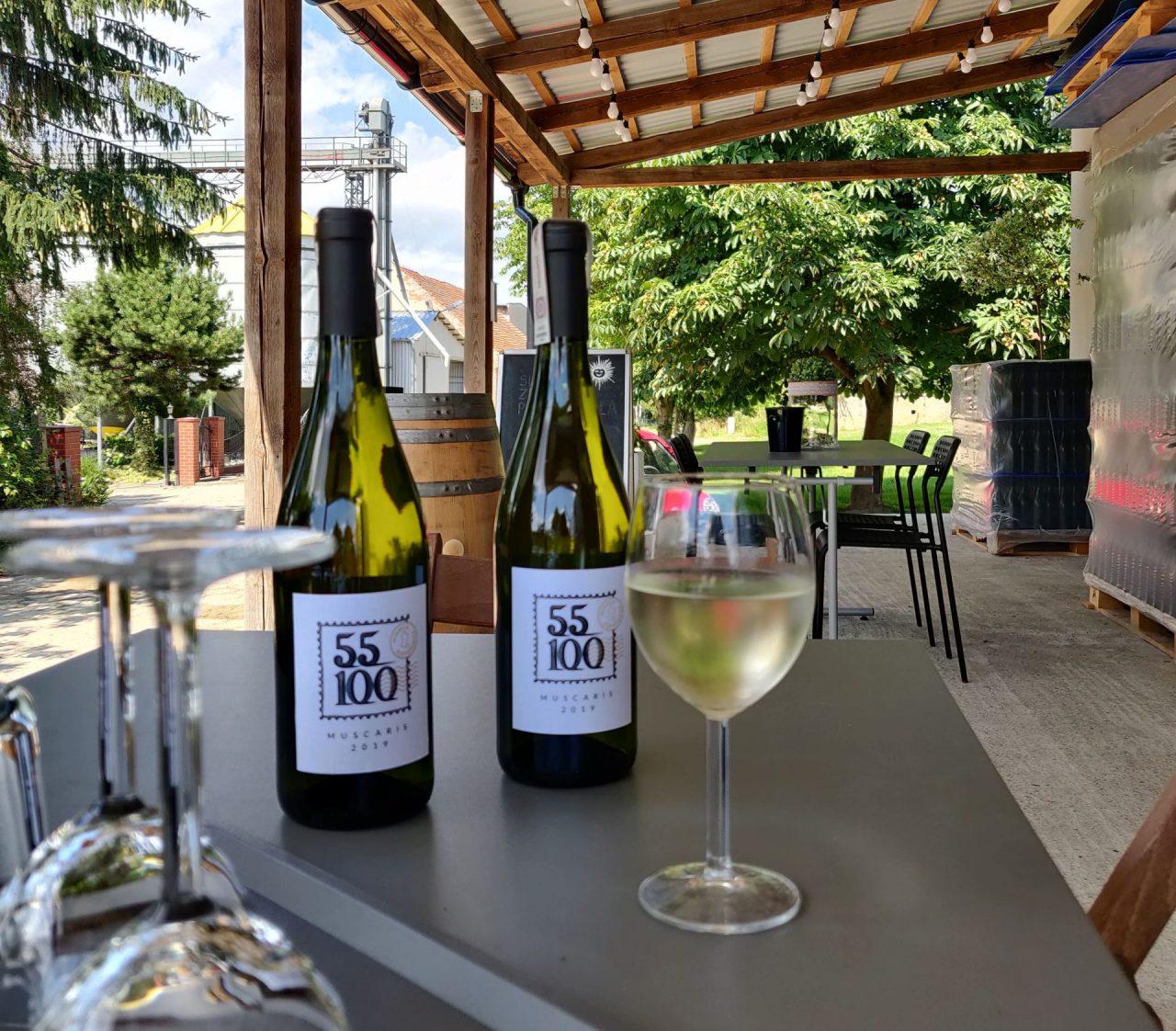 Wino białe, winnica 55:100